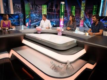 ¿Sexo al aire libre para prevenir la COVID-19? Tamara Falcó, Nuria Roca y Juan del Val dan su opinión en 'El Hormiguero 3.0'