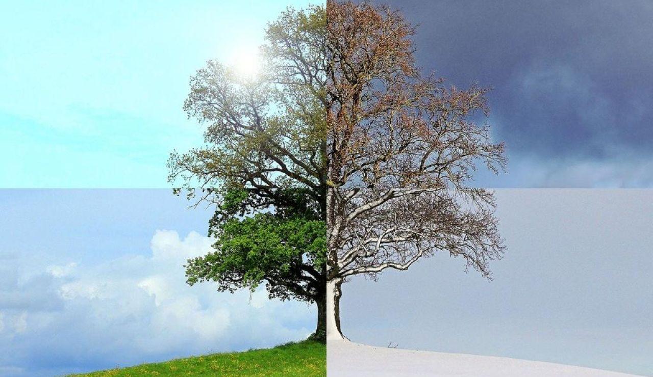 Equinoccio y solsticio en qué se diferencian