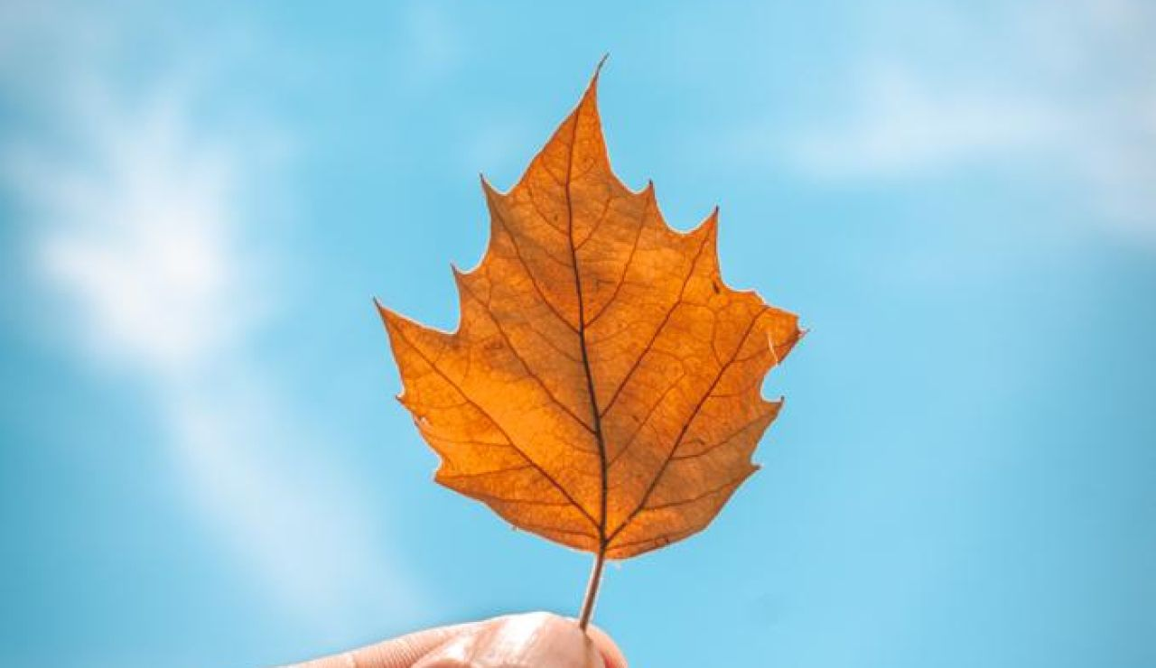 El tiempo en otoño de 2020: ¿Qué tiempo hará en septiembre, octubre y noviembre?