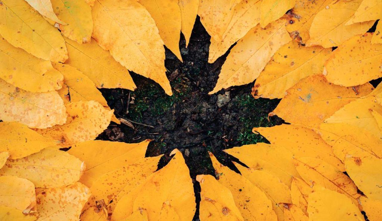 Rituales para celebrar el equinoccio de otoño en 2020
