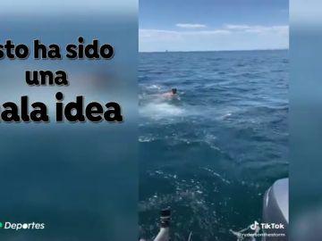 Se lanza al agua pensando que era un tiburón peregrino y se topa de frente con un tiburón blanco