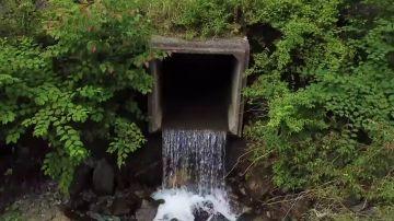 Visita un pequeño pueblo en Japón y se lleva un gran susto al descubrir quienes son sus terroríficos habitantes