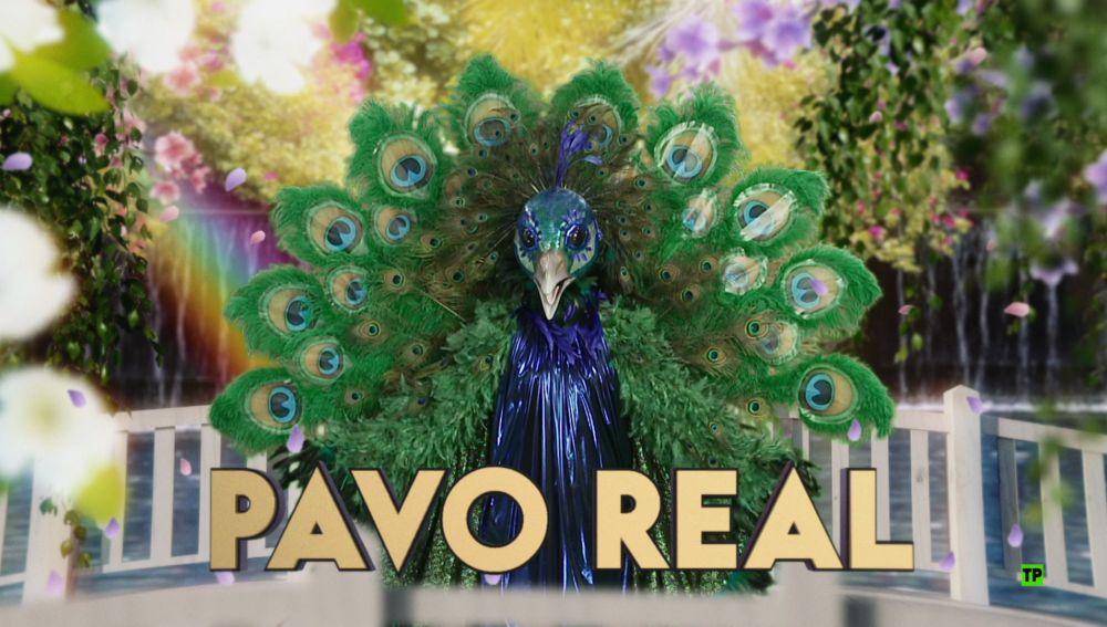 ¿Qué personaje famoso se esconde detrás de la máscara del Pavo Real?