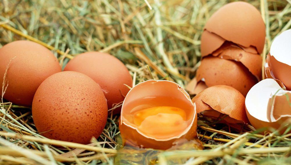Una pomada a base de yema de huevo para protegernos del Coronavirus