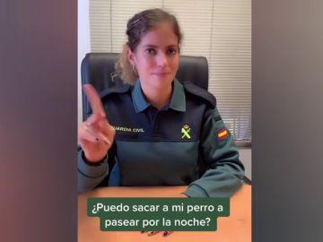 La Guardia Civil explica en Tik Tok si puedes sacar el perro o hacer deporte durante el toque de queda nocturno