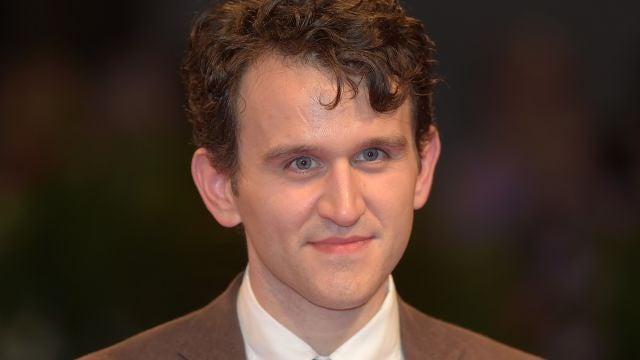 Harry Melling, Dudley Dursley en 'Harry Potter'