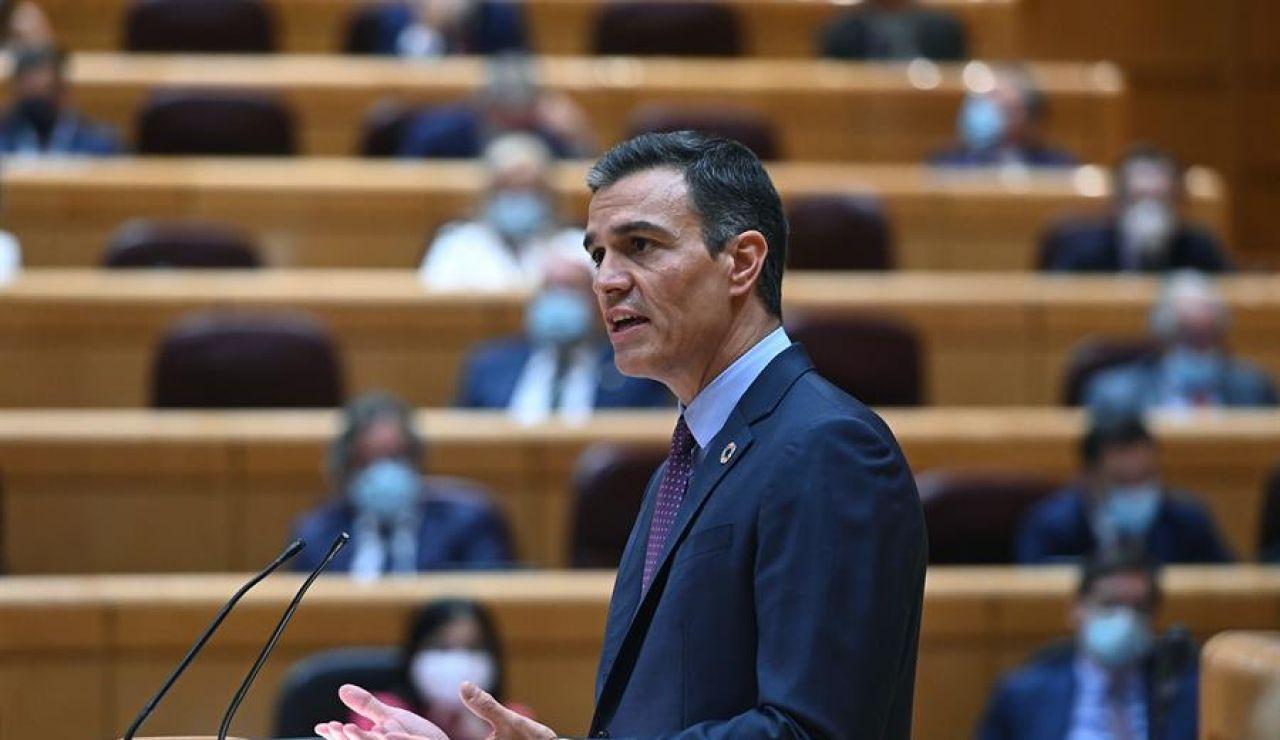 Pedro Sánchez responde en el Senado