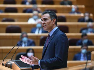 Pedro Sánchez, en una imagen de archivo en el Senado.