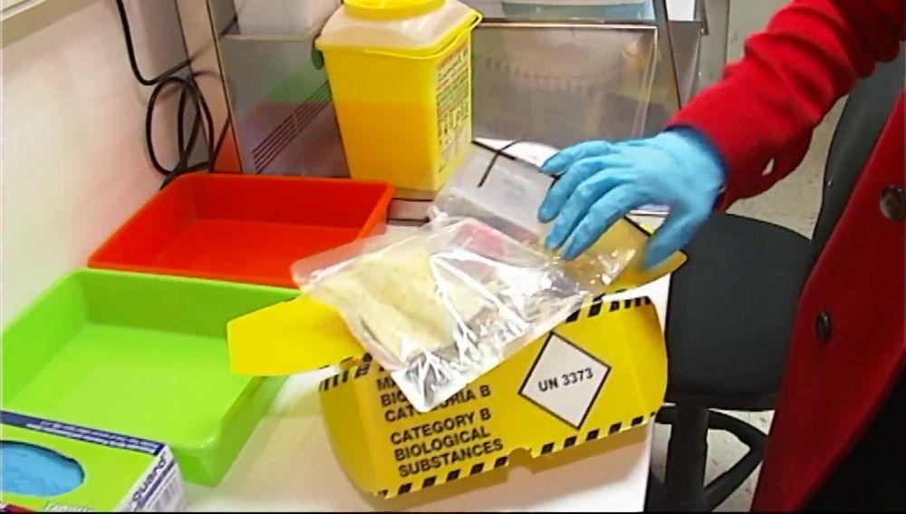 PCR a domicilio