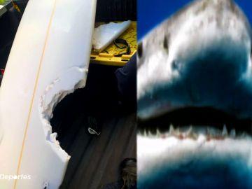 Muere un surfista por el terrible ataque de un tiburón y suspenden la World Surf League de Hawái
