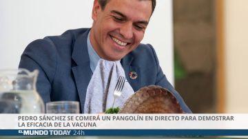 Pedro Sánchez se comerá un pangolín en directo para demostrar la eficacia de la vacuna