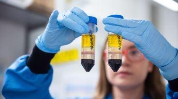 La Agencia Europea del Medicamento solicita a AstraZeneca más información para poder aprobar su vacuna