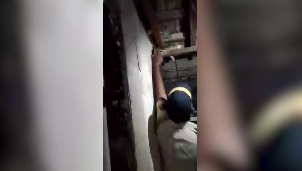 Un policía captura una pitón de casi tres metros con las manos en el techo de una casa