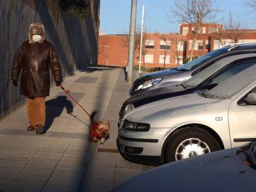 Una mujer pasea con su perro