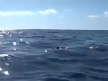 Rubén López, el español que sobrevivió al Triángulo de las Bermudas tras nadar 20 kilómetros