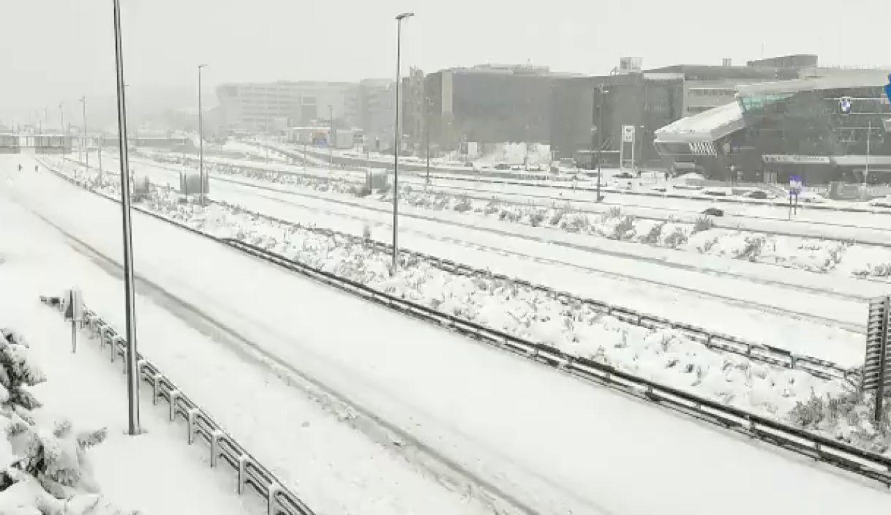 Muere un hombre sepultado por la nieve en Zarzalejo, Madrid