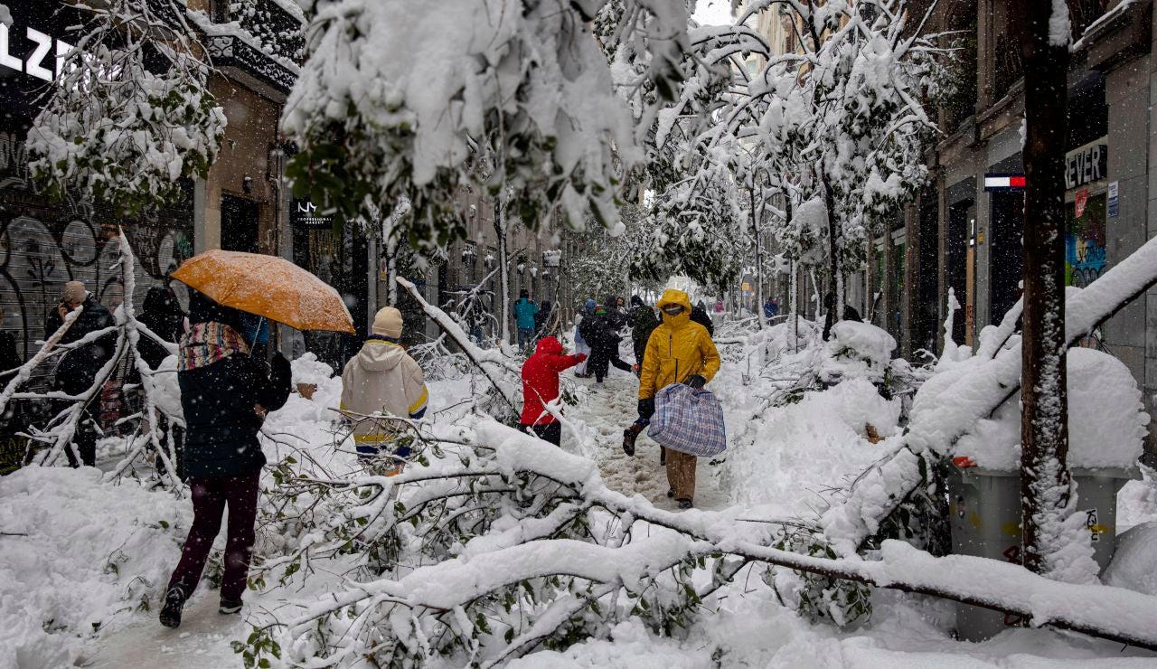 Varias personas pasean por la calle Fuencarral entre numerosos árboles caídos