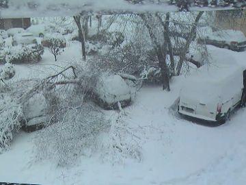 Qué cubre y qué excluye el seguro de los daños provocados por el temporal Filomena