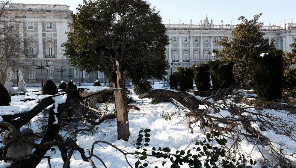 Polémica entre el Ayuntamiento de Madrid y el Gobierno ante la posibilidad de declarar la zona catastrófica por el temporal Filomena