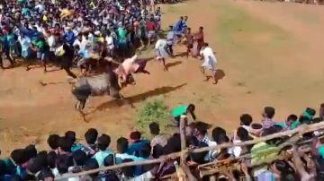 Un toro salta la valla y arrasa entre el público de un evento de toros en la India