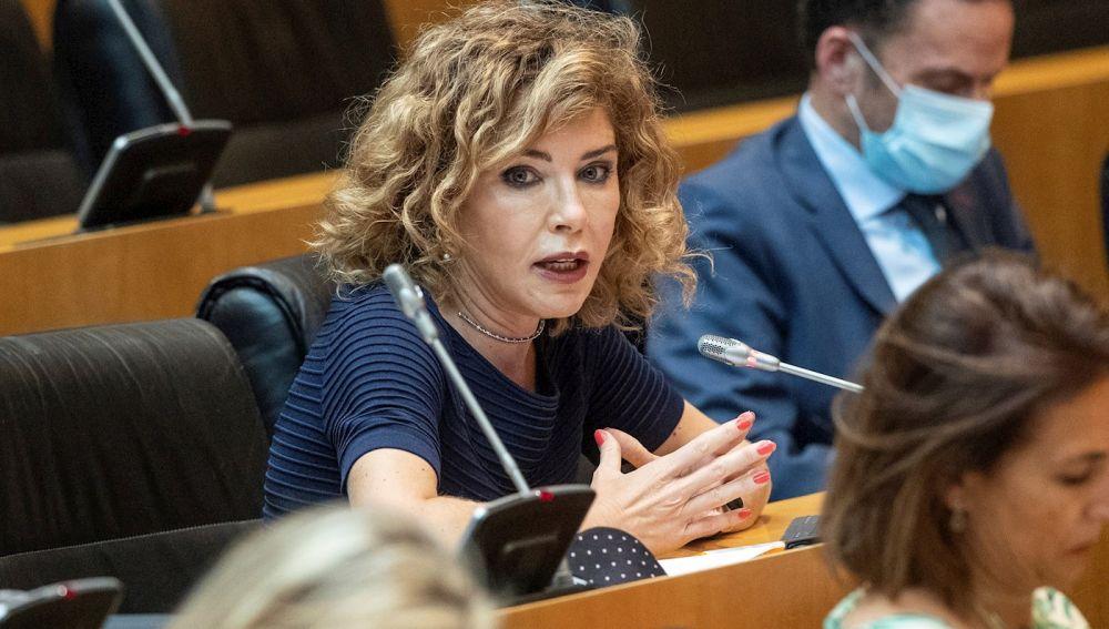 La diputada de Ciudadanos Marta Martín interviene en una comisión
