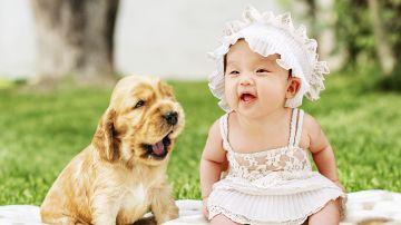 Un bebé y un perro riendo juntos
