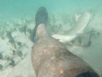 ¿El spa de peces más peligroso del mundo? Un hombre deja que tiburones le muerdan los pies