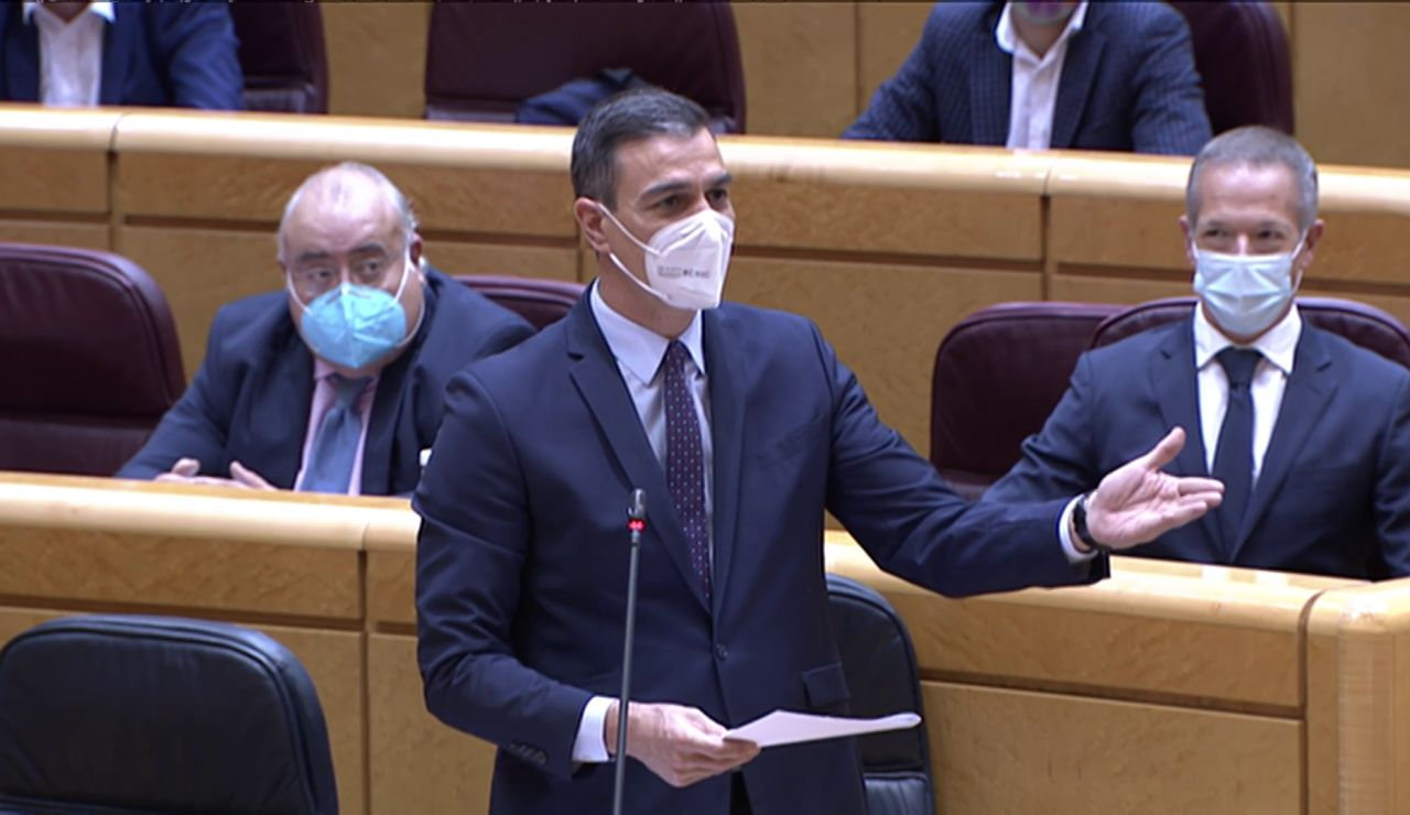 Pedro Sánchez, en la sesión de control al Gobierno del Senado
