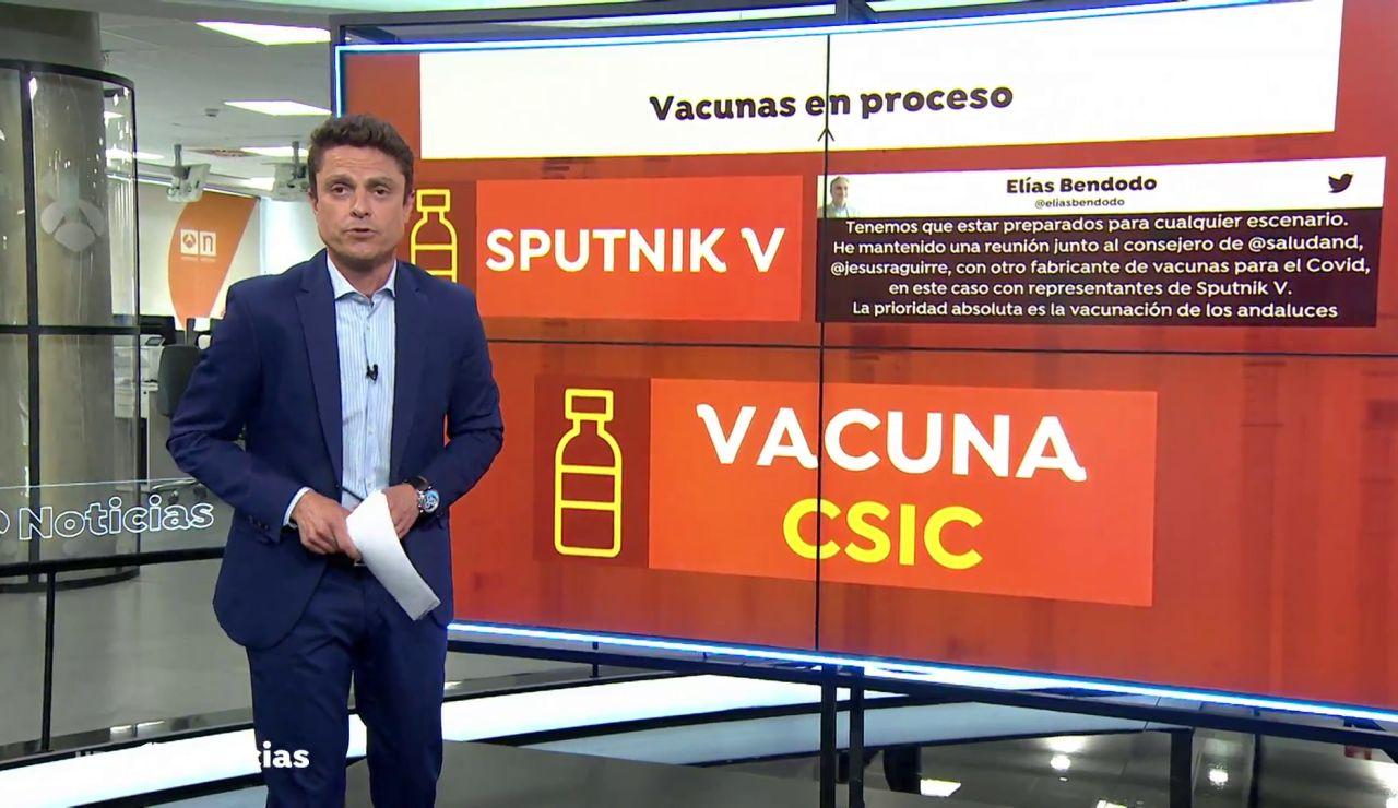 Así son las vacunas que desarrolla el CSIC en España