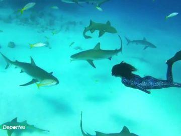 """Ariadna Hafez, apneísta y modelo subacuática: """"He buceado con tiburones, delfines y ballenas"""""""