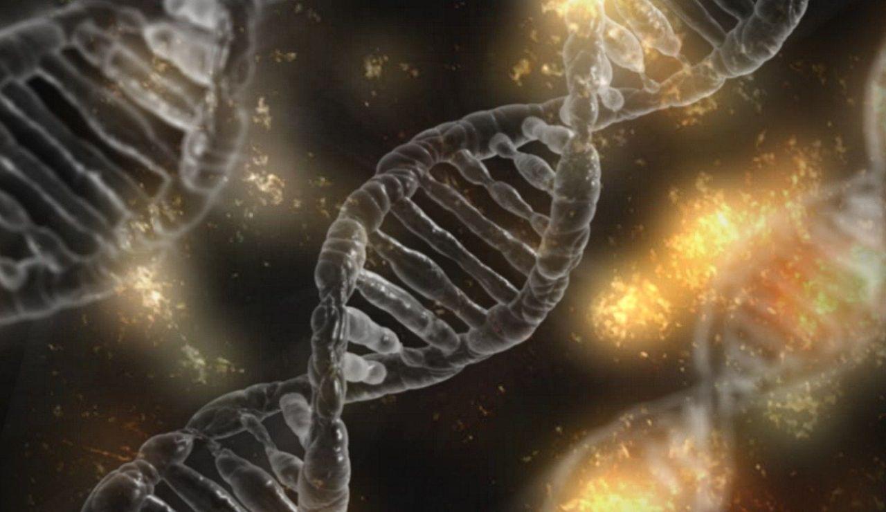 Descubren los tres factores epigenéticos que podrían predecir la gravedad del coronavirus