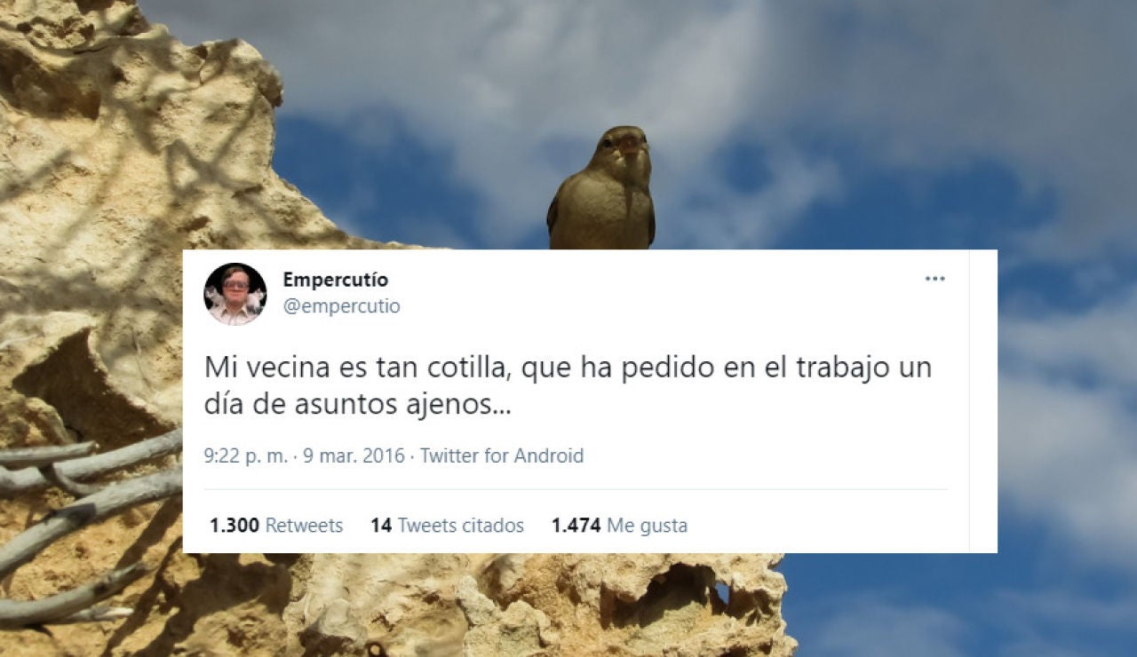 Tuit de @empercutio