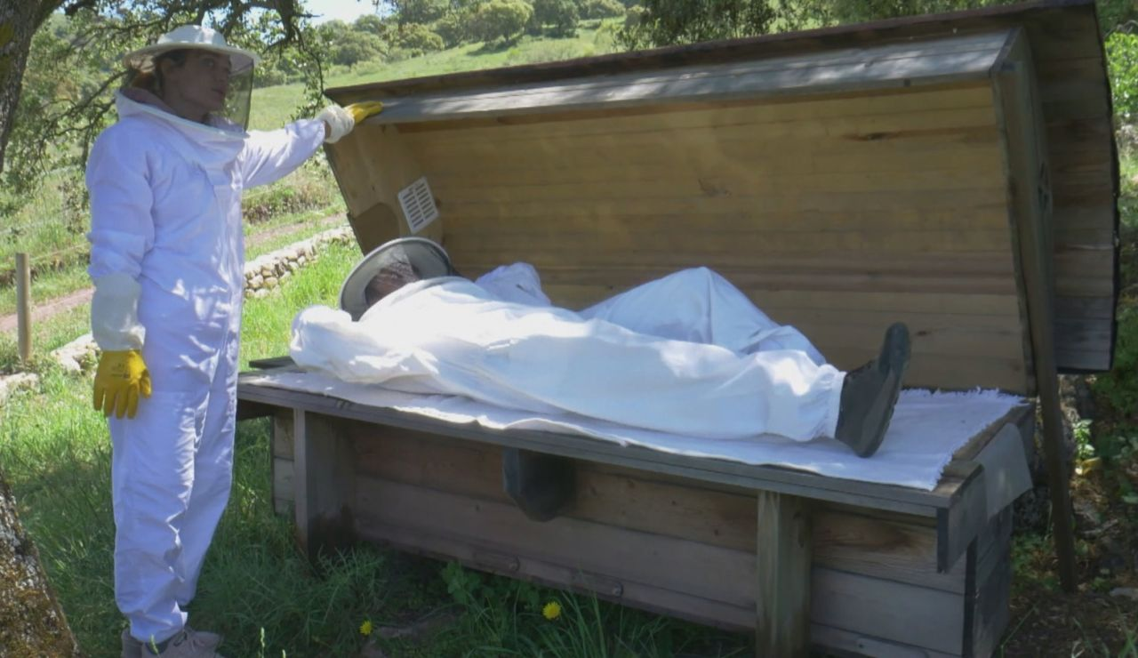 La 'cama de abejas', acostarse sobre una colmena como nuevo método de relajación