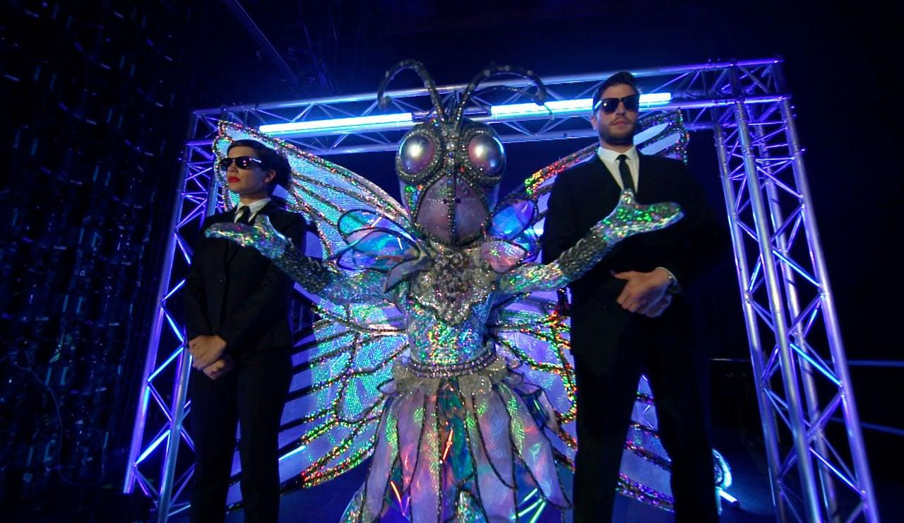 Una máscara muy especial y deslumbrante: ¡prepárate para descubrir el efecto Mariposa!