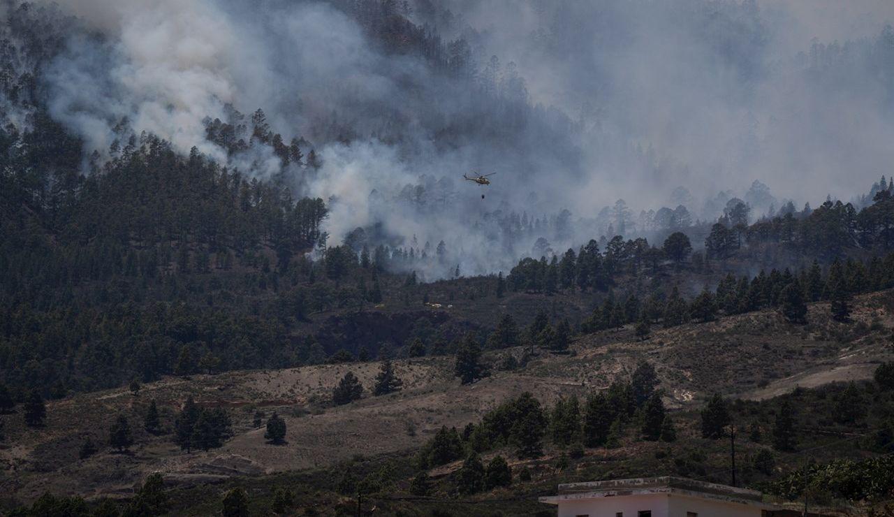 Medios aéreos se han incorporado las labores de extinción del incendio forestal que ha comenzado esta mañana en el barranco de Chajaña, en el municipio tinerfeño de Arico, y que se desplaza hacia la cumbre de la isla