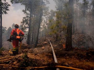 Las llamas del incendio de Tenerife llegan al Parque del Teide
