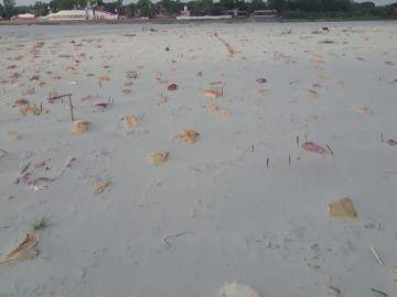 La India convierte la orilla del río Ganges en un inmenso cementerio de muertos por coronavirus