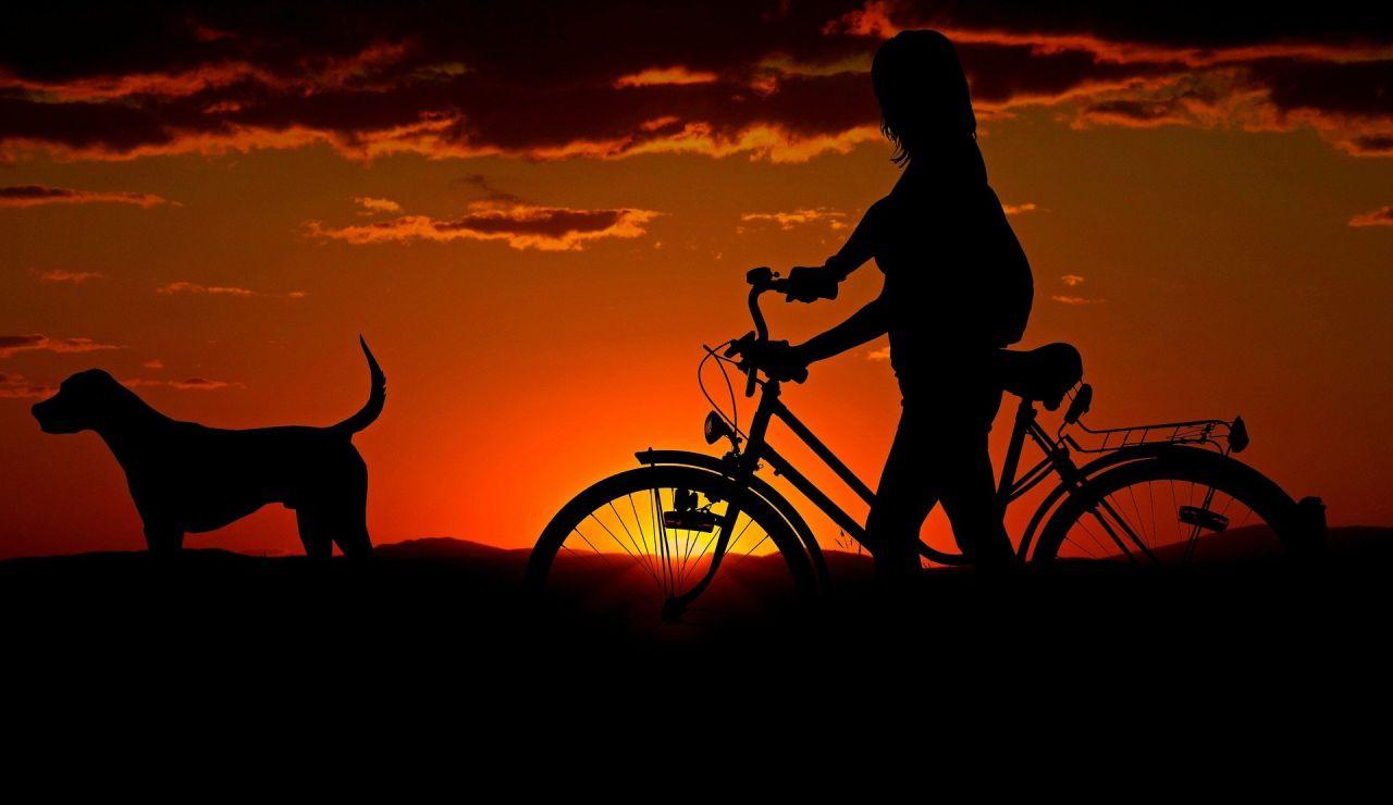 Día Mundial de la Bicicleta 2021: Cómo solicitar una ayuda para comprar tu bicicleta