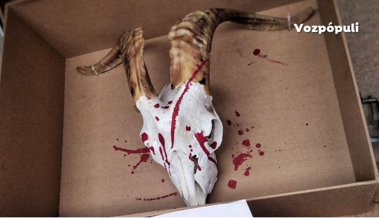Luis Planas resta importancia a las supuestas amenazas de cazadores por la protección al lobo