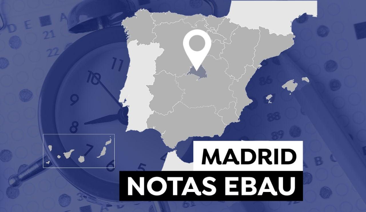 Notas Evau Madrid 2021: Consultar el resultado de la selectividad