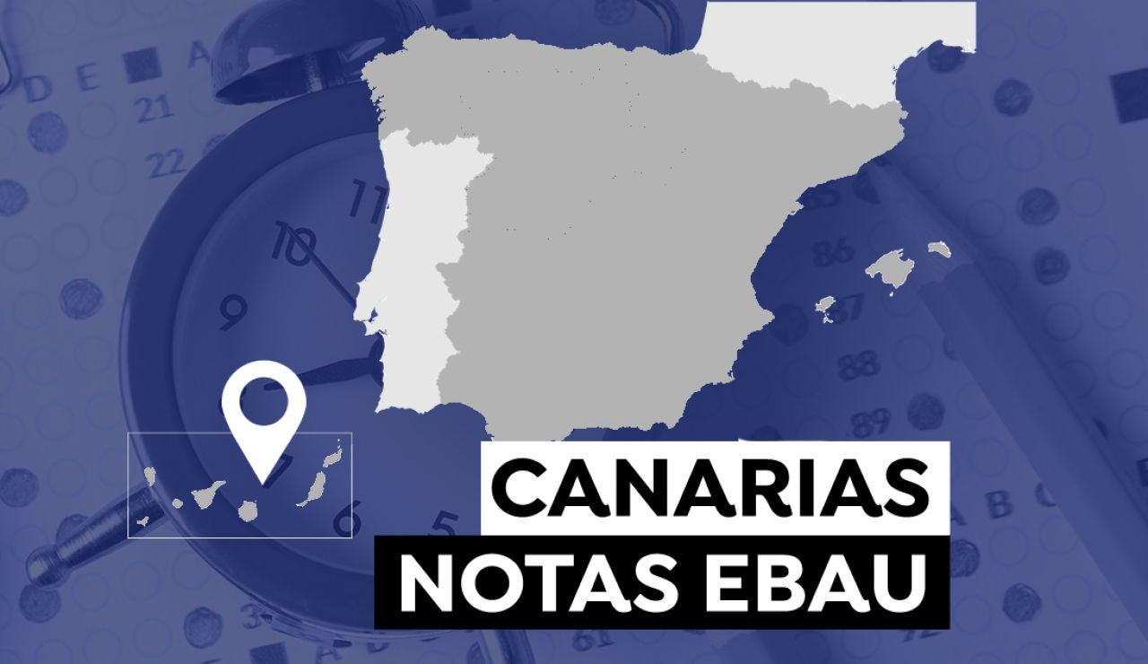 Notas Evau Canarias 2021: Consultar los resultados de la selectividad