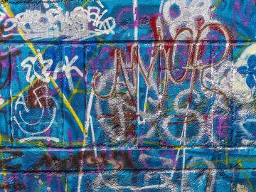 La Comunidad de Madrid endurecerá las sanciones al abandono de excrementos caninos y a grafitis