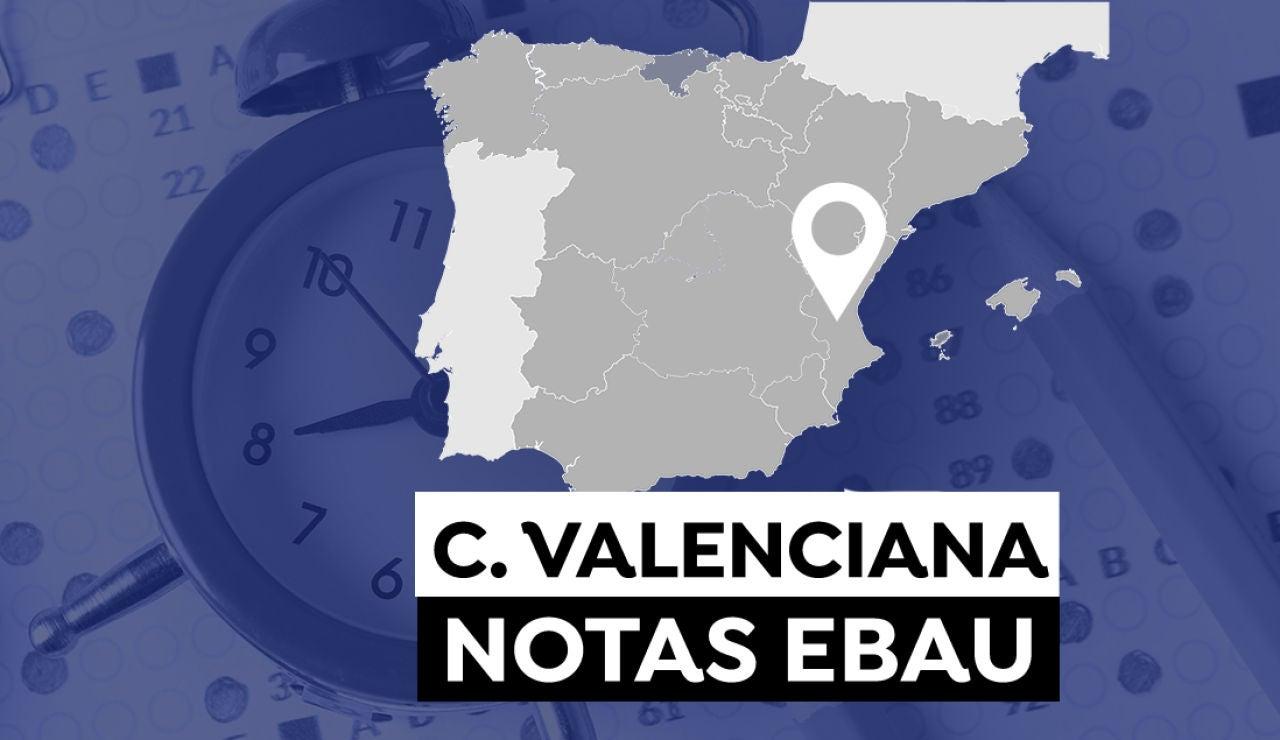 Notas Evau Comunidad Valenciana 2021: Consultar los resultados de selectividad en Castellón Valencia y Alicante