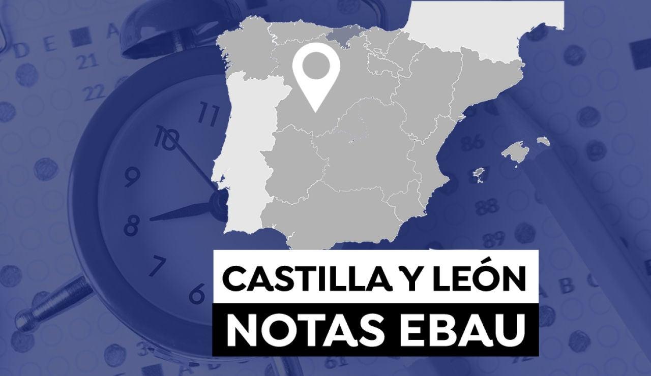 Notas Ebau Castilla y León 2021: Consultar los resultados de selectividad