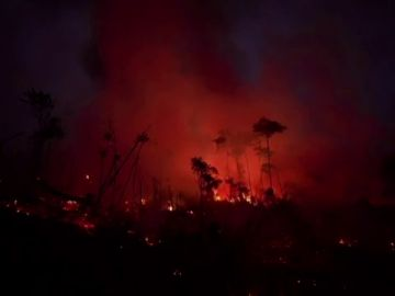 Junio ha sido el mes con más incendios en el Amazonas brasileño de los últimos 14 años