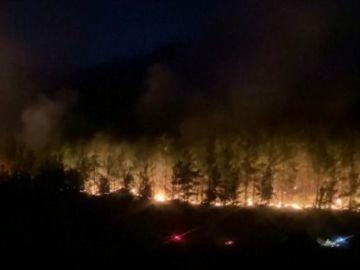 Tres muertos y más de 50 heridos en los incendios de Turquía her