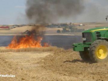 Los agricultores y ganaderos, clave para evitar los incendios en el campo