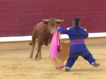 """El Gobierno pide cancelar el espectáculo del 'bombero torero' en Badajoz: """"Denigra a la personas con discapacidad"""""""