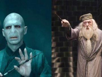 Voldemort y Dumbledore