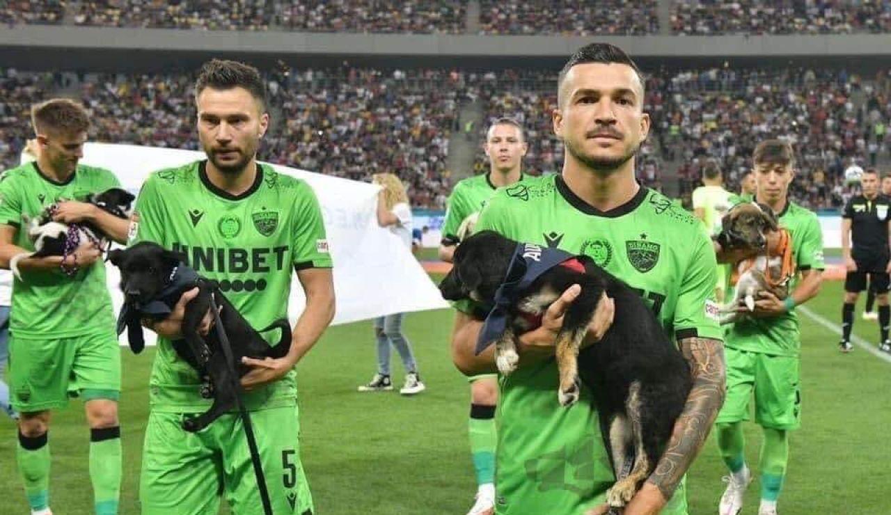 Los equipos rumanos van a ofrecer perros en adopción a sus aficionados antes de cada partido
